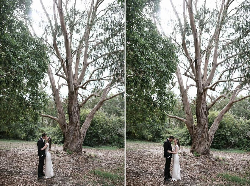 wedding-couple-under-gumtrees