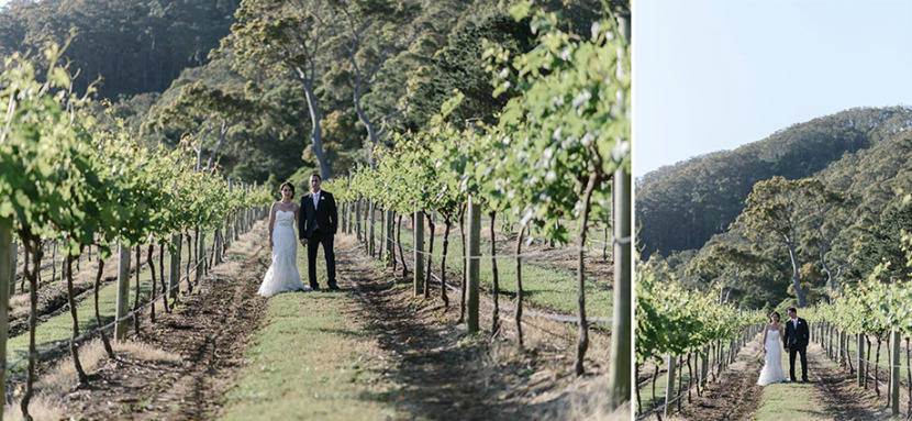 bride-groom-portrait-amongst-coolangatta-vines