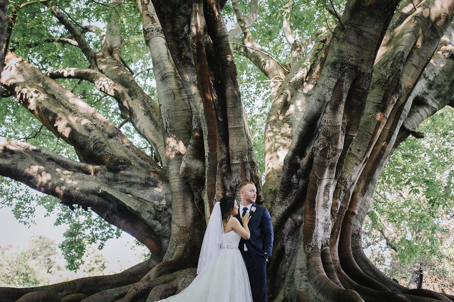 bride-groom-wedding-portrait-under-tree