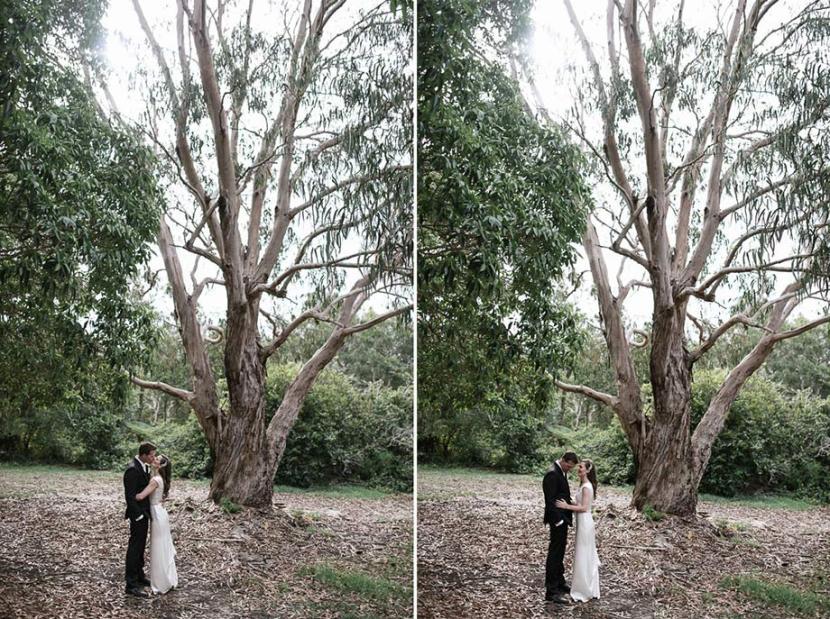 bride-groom-wedding-portrait-in-trees
