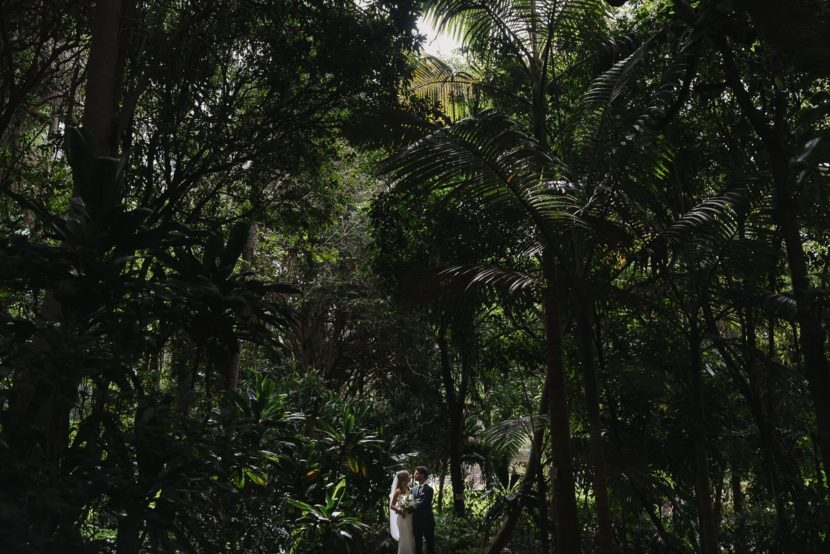 bride-groom-wedding-potrait-in-trees-sydney-rbg
